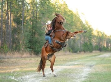 VIDEO: Everything Equine Expo at Lake Waccamaw