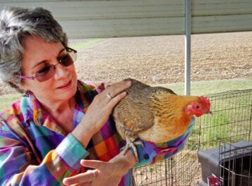 Physician cares for creatures great and small